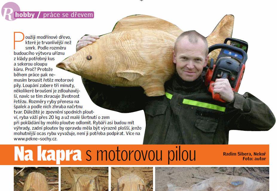 Článek na iReceptář.cz